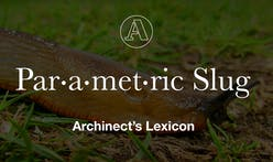 "Archinect's Lexicon: ""Parametric Slug"""