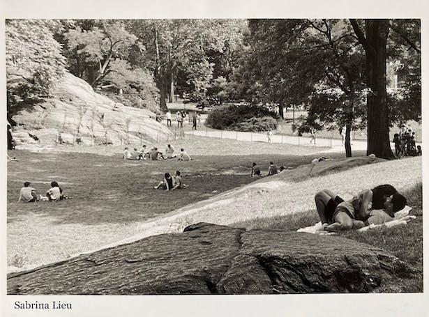 Central Park, NY Minolta x-700 35mm manual single lens reflex