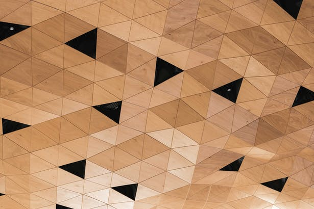 WOOD-SKIN is a semi-rigid membrane that makes complex forms and movements possible. Photo Credits: DSL Studio