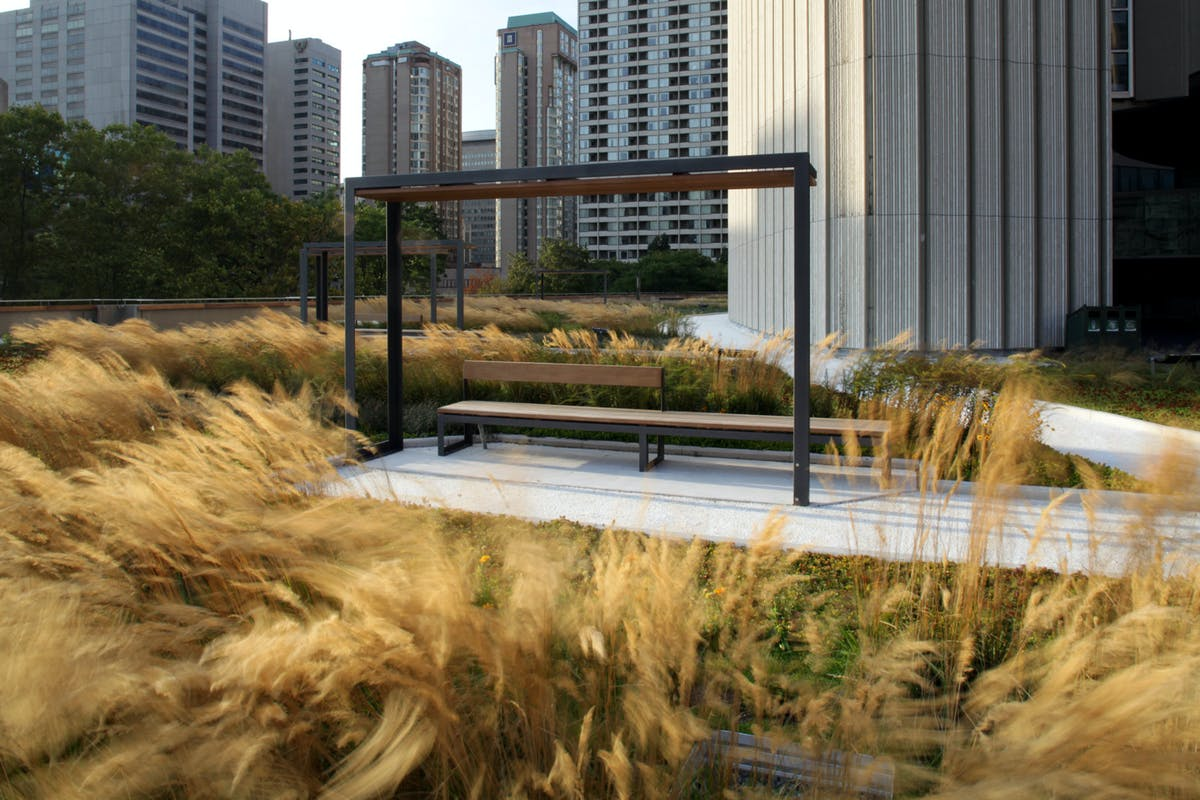 Roof Garden Architecture Landscaping