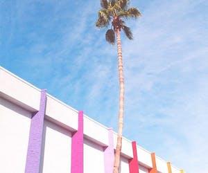 Palm Springs Modernism Week 2019