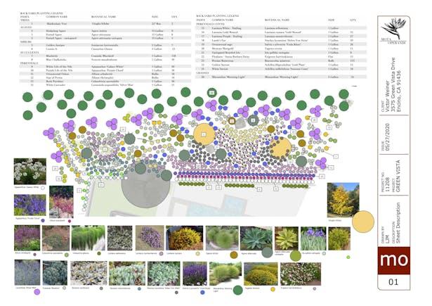 Plan View / Plant List