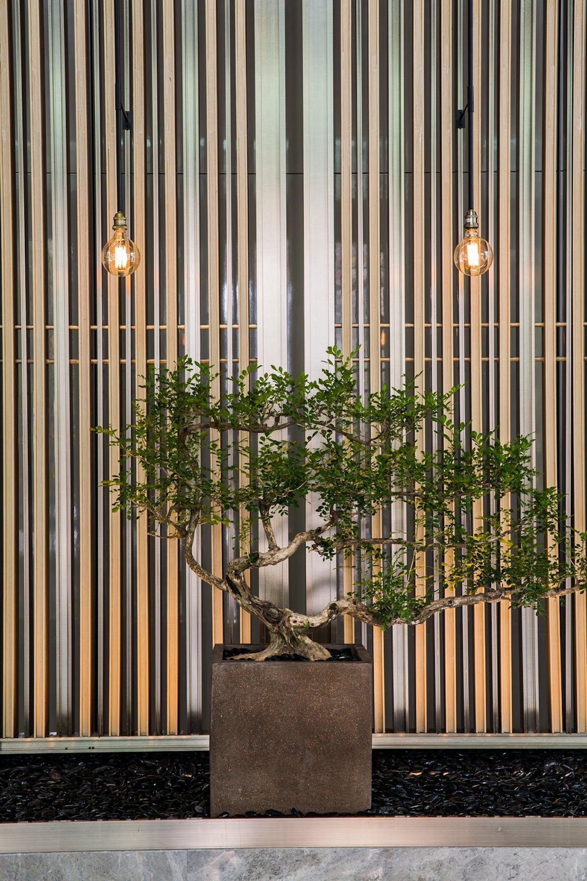 Shenzhen Marriott Hotel Nanshan Designwire China Archinect