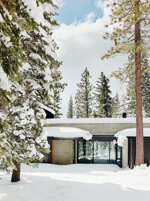 Forest House (Photo: Joe Fletcher)