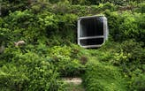When green architecture gets too green