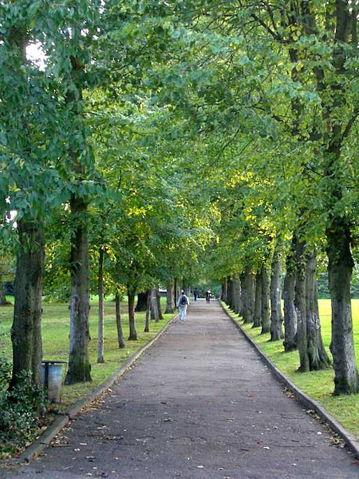 """Scientists confirm: adding trees to neighborhood streets """"improves health perception in ways comparable to an increase in annual personal income."""" (Photo: Salim Fadhley/Wikimedia Commons)"""