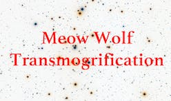 Extra Extra: Meow Wolf Transmogrification