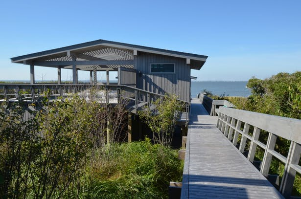 Pool house and boardwalk.