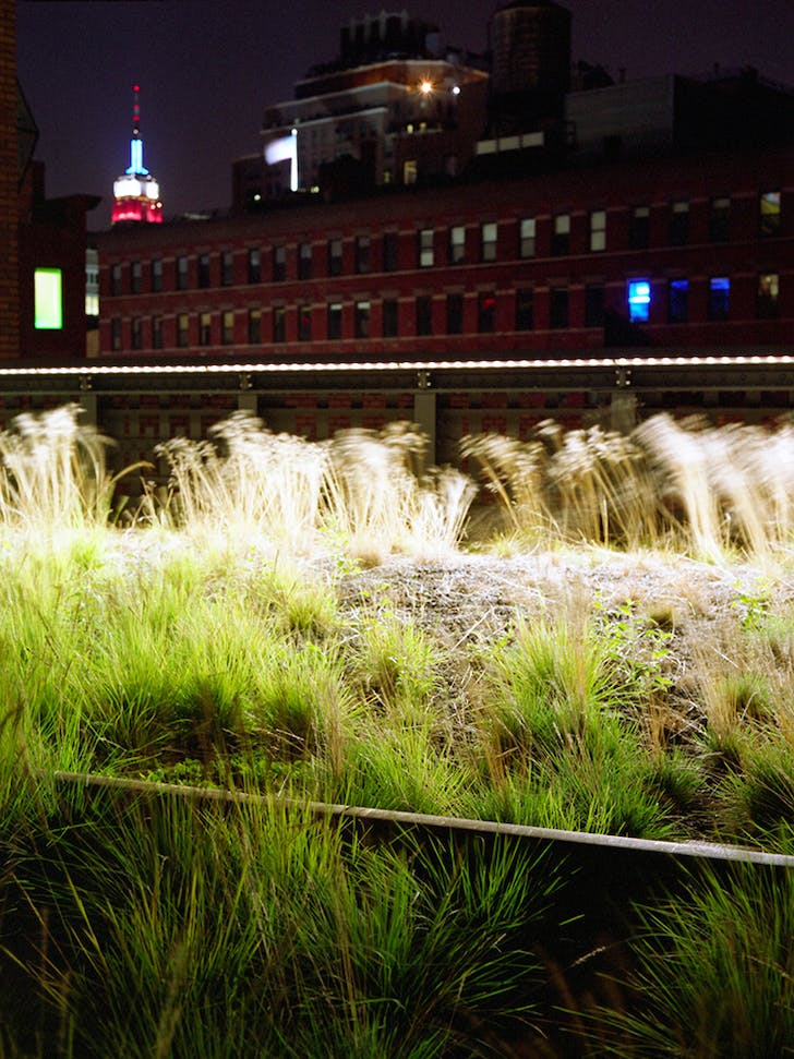 High Line, New York. James Corner Field Operation and Diller Scofidio + Renfro © Agnese Sanvito