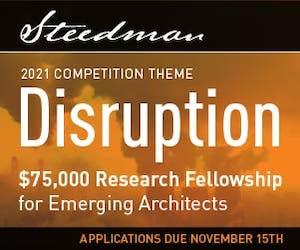 Steedman Fellowship 2021: Disruption