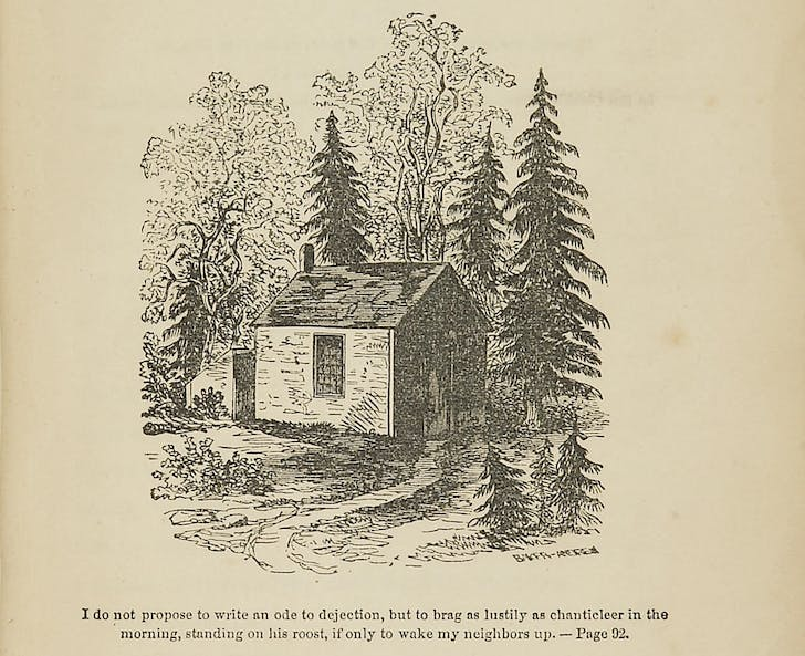 From the cover of 'Walden: Life in the Woods' by Henry D. Thoreau