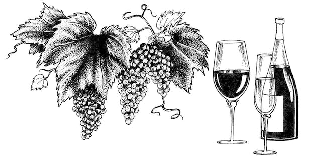 This pen and ink illustration adorned the wine menu of a restaurant located in New York City.