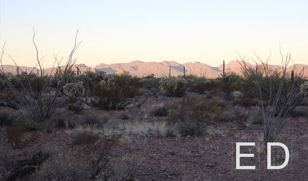 Figure 01: Tak-Va'Vak Mountain Range, part of the Tohono O'odham ancestral lands in the Sonoran Desert. Photograph by Nina Kolowratnik.