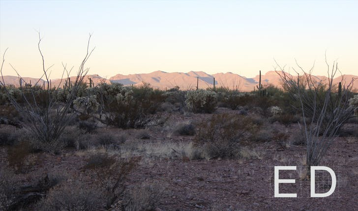 Figure 01: Tak-Va'Vak Mountain Range, part of the Tohono O'odham ancestral lands in the Sonoran Desert. Photograph by Nina Kolowratnik.