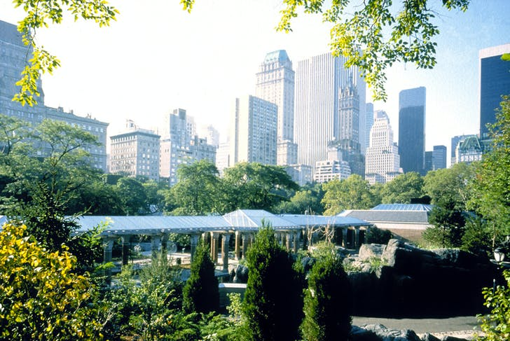 Central Park Zoo. Courtesy of Kevin Roche John Dinkeloo and Associates LLC.