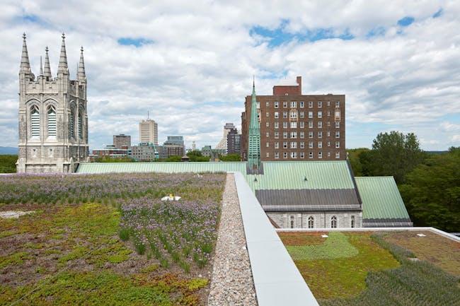 Terrace. Photo by Bruce Damonte.