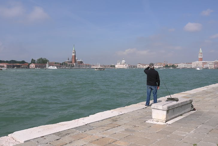 The view at Venice. Photo by Andrea Dietz.