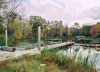 Foote's Pond Wood