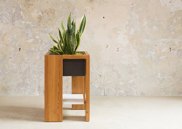 Leon Plant Stand
