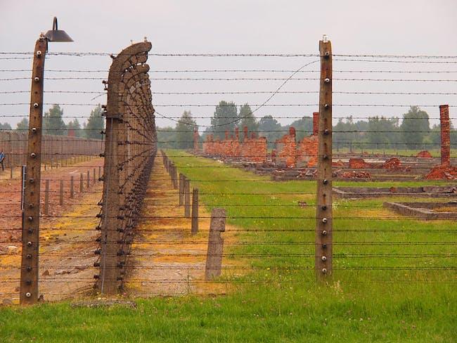 Birkenau fence and ruins, via flickr/Paul Arps.