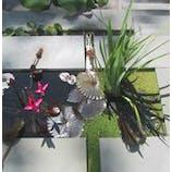 Michael Vergason Landscape Architects, Ltd