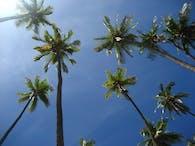 Molokai'i Redevelopment Plan