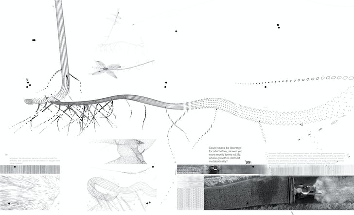 From Pamphlet 35, 'Going Live'. Image courtesy of Princeton Architectural Press.