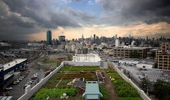 Rooftop farms combine the rural and urban in future cities