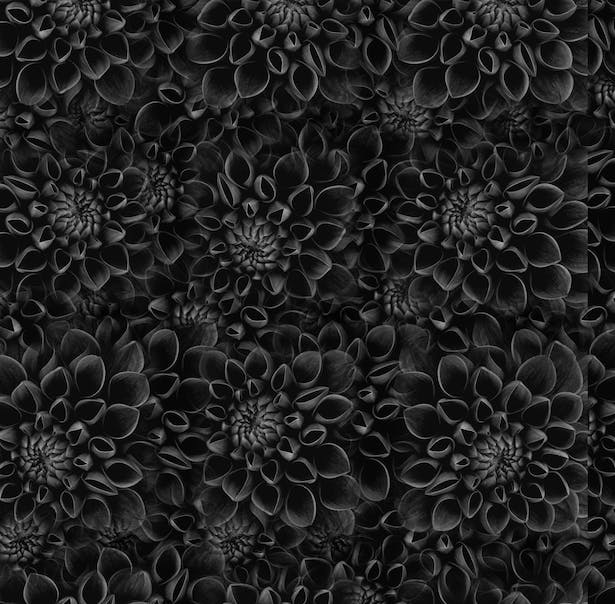 Black Flower Surface