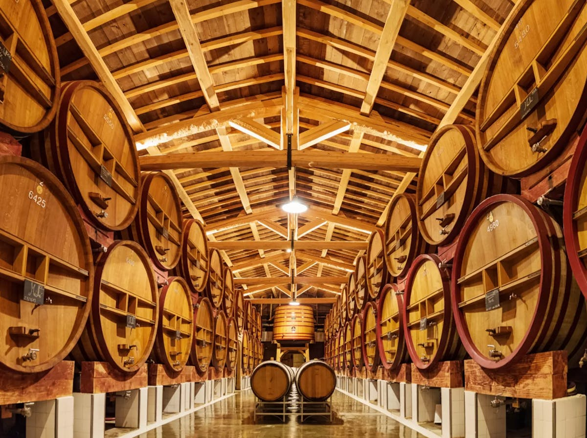 shigeru ban among 10 teams shortlisted for a french winery renovation competition news archinect. Black Bedroom Furniture Sets. Home Design Ideas