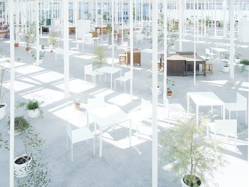 Interior view of Kanagawa Institute of Technology Workshop. ©junya.ishigami+associates
