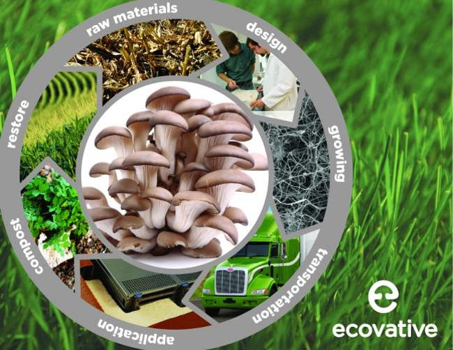 Ecovative promo composite