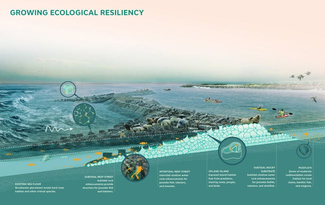 2014 Buckminster Fuller Challenge winner: Living Breakwaters
