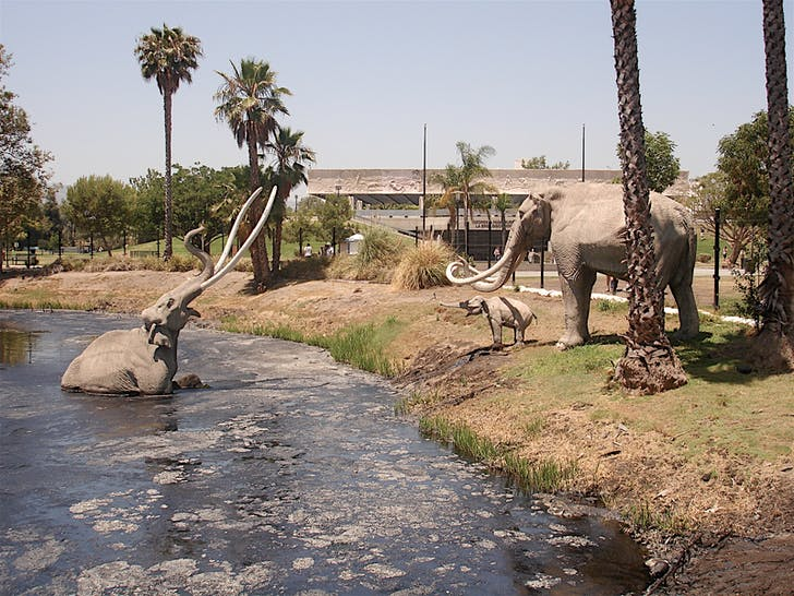 The La Brea Tar Pits (photo via Wikipedia)