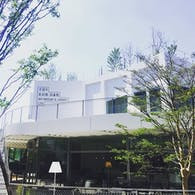 Art Museum and Library