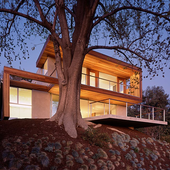Tree House in Los Angeles, CA by Standard