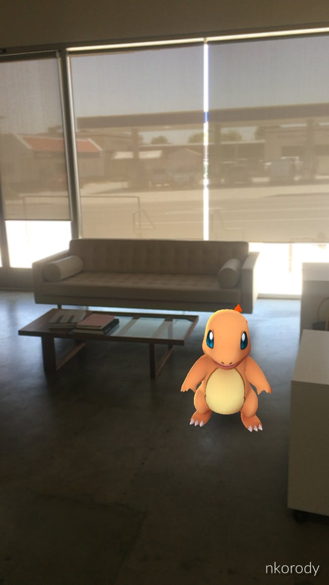 Charmander in the Archinect office.