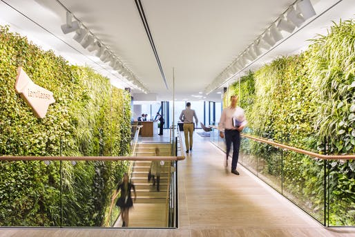 'Workplace Design': Lendlease HQ by Hassell. Photo Credit: Nicole England.