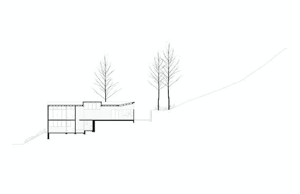 Transversal Section Dellekamp Arquitectos
