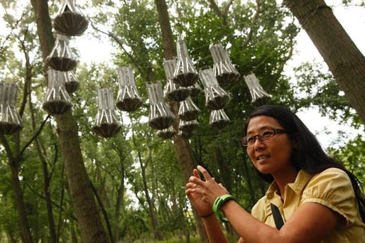 Joyce Hwang, UB architecture professor, combines her expertise in biology to create habitats for the flying mammals (Photo: The Buffalo News)