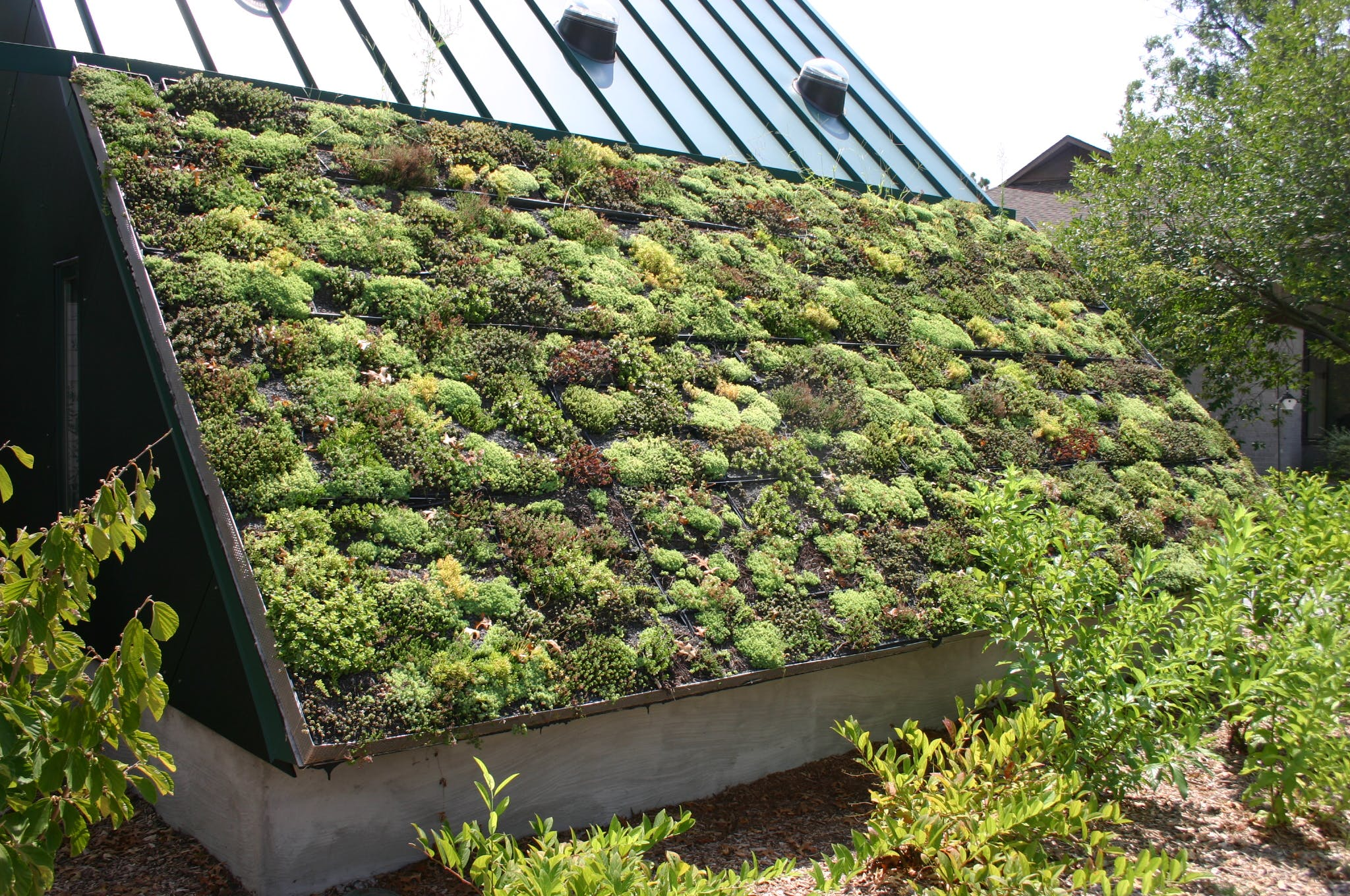 France Mandates Quot Green Roofs Quot For All New Buildings News