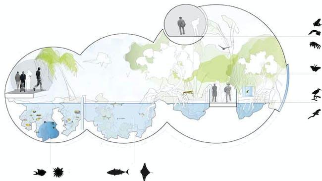 Diagram (Image: HHF and BURCKHARDT+PARTNER)