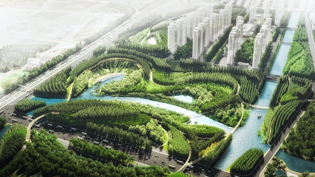 Water Valley - A lion-energized topography with native forest and pedestrian bridge network © TLS