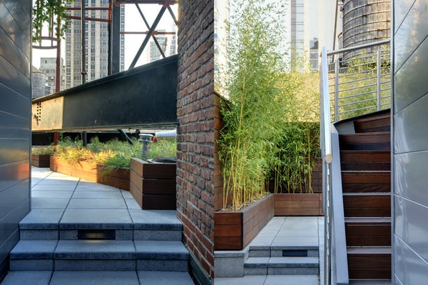 Midtown Minimal Rooftop Garden. Photo: T. G. Olcott