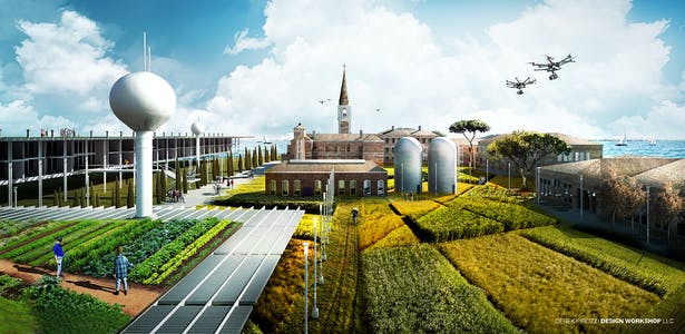 Agricultural Fields - University Island Poveglia YAC