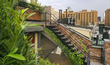 Biophilia: 10 examples of nature and architecture blending harmoniously
