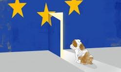 Architects react to shocking EU referendum result
