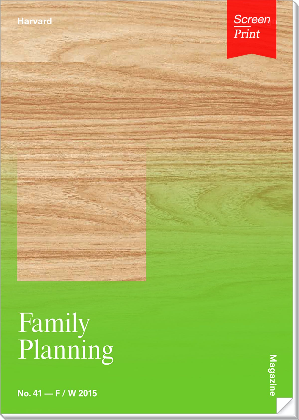 term paper about family planning