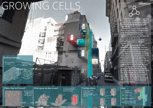 Second Place: Growing Cells; Participants: Emilio Bartolini and Benjamín Martínez; Country: Argentina