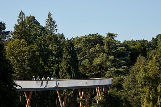 Stihl Treetop Walkway by Glenn Howells Architects. Photo by Rob Parrish.